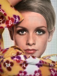 Twiggy II by Nick Holdsworth -  sized 35x47 inches. Available from Whitewall Galleries